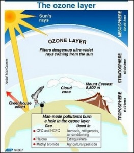 Essay on The Ozone Layer Depletion and Its Effects