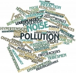 Essay on noise pollution effects